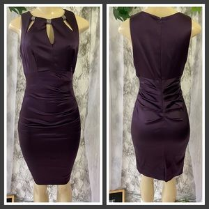 Plum Sating Dress